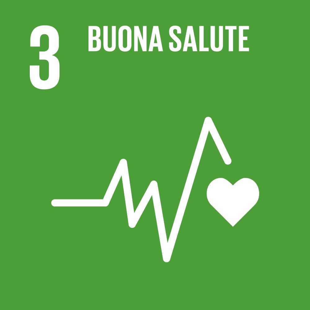 Icona SDG Obiettivo 3